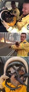 foto-incendi-australia-15